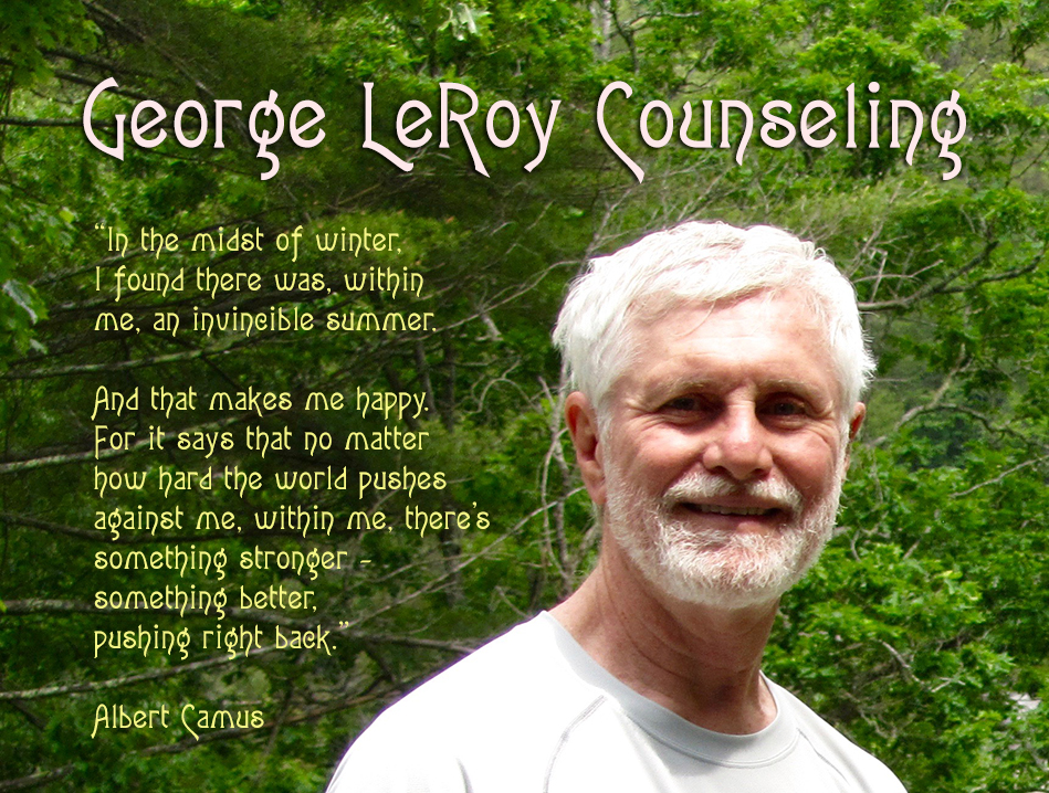 George Leroy Counseling header image